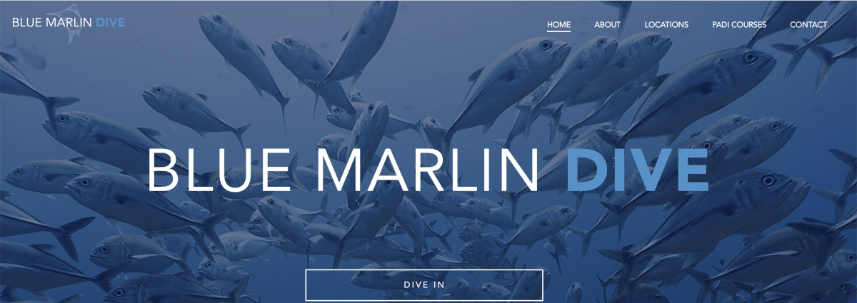 Blue Marlin Divers Site