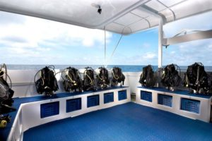 dive deck galapagos master liveaboard